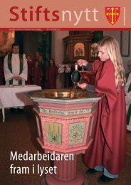 Stiftsnytt - Den norske kyrkja