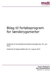 Bilag til forløbsprogram for lænderygsmerter - Regionshospitalet ...