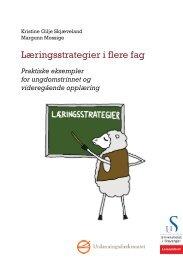 Læringsstrategier i flere fag - Lesesenteret - Universitetet i Stavanger