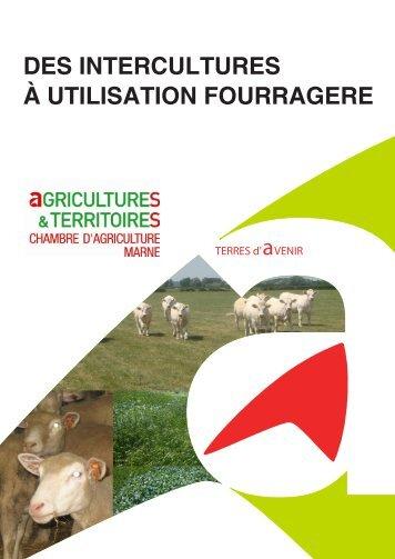 Magazines - Chambre d agriculture de haute marne ...