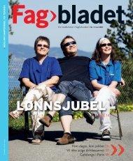 Fagbladet 2007 05 SAM