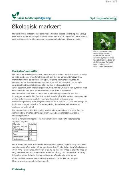 Økologisk markært