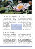 läsa eller ladda ned broschyren här - Martinus Institut - Page 4