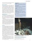 HavsUtsikt nr 3,2009 - Havet.nu - Page 7
