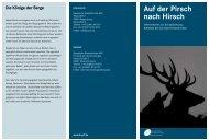 Auf der Pirsch nach Hirsch - Bayerische Staatsforsten