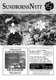 S-Nytt nr 1 april 2003.indd - S-info