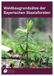 Waldbaugrundsätze der Bayerischen ... - Bayerische Staatsforsten