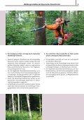 Waldbaugrundsätze der Bayerischen ... - Bayerische Staatsforsten - Seite 5