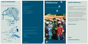 Waldluchse - Bayerische Staatsforsten