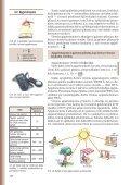 4. APGAISMOJUMS UN ATTĒLI - Page 6