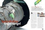 Moderna predatortackel Del 2 - Jens Bursell