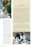 LIT - Federale politie - Page 4