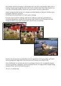Kanindåb i Roklubben - Sebbe Als - Page 2