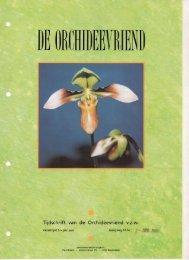 1993 - 2 - Orchideeën Vereniging Vlaanderen