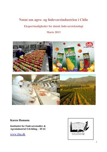 Notat om agro- og fødevareindustrien i Chile