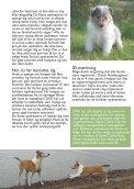 Info om - collie.dk - Page 7