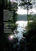 Mediband katalog 2005 - Page 4