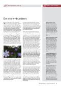 Klikk her for å lese bladet.. - Drammen Kirker - Den norske kirke - Page 3