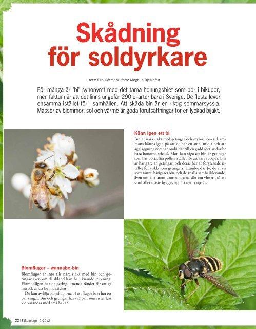 Fältbiologen 2/2012.pdf - Fältbiologerna