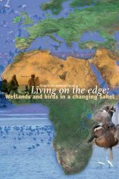 Samenvatting: Living on the Edge