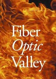 V E R K S A M H E T S B E R Ä T T E L S E 2 0 1 1 - Fiber Optic Valley