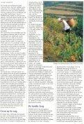 Het Witte Boek - Page 5