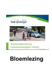Bloemlezing - De gemeente Oude IJsselstreek