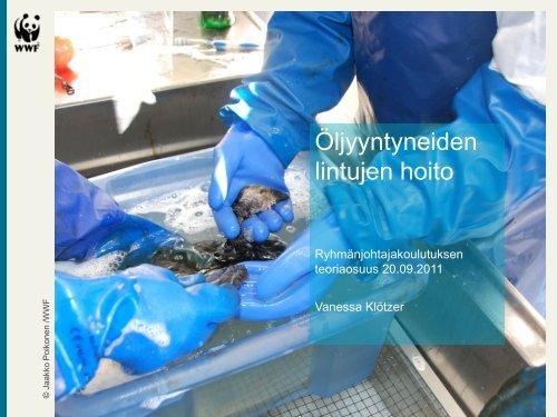 Öljyyntyneiden lintujen hoito - WWF