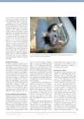 Försöksdjursanestesi - Internwebben - Karolinska Institutet - Page 7