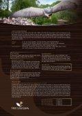 Bekijk hier alle teambuildingsmogelijkheden die GaiaZOO biedt ... - Page 2