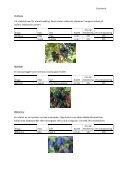 Växtpärm – Frukt och bär - Timjan & Träd - Page 4