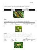 Växtpärm – Frukt och bär - Timjan & Träd - Page 6