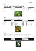 Växtpärm – Frukt och bär - Timjan & Träd - Page 7
