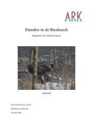 Elanden in de Biesbosch - ARK Natuurontwikkeling