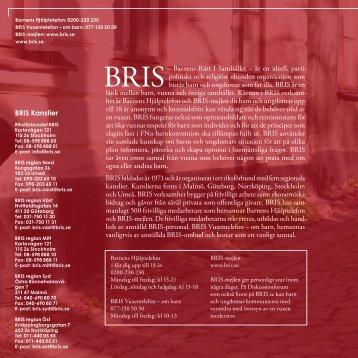 BRIS-rapporten 2008