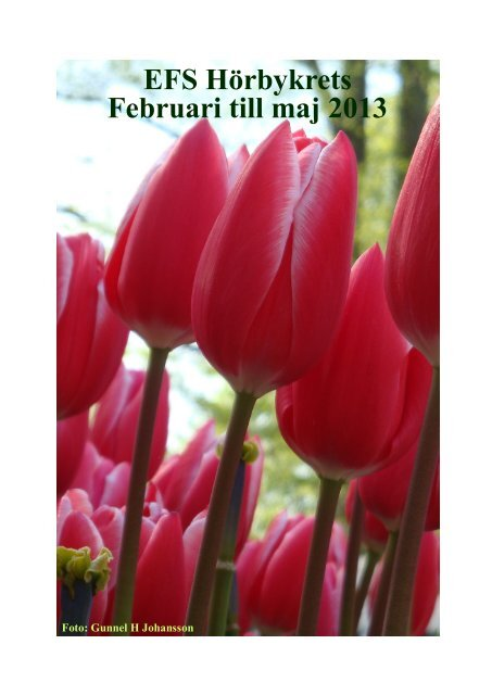 Februari till maj 2013 EFS Hörbykrets