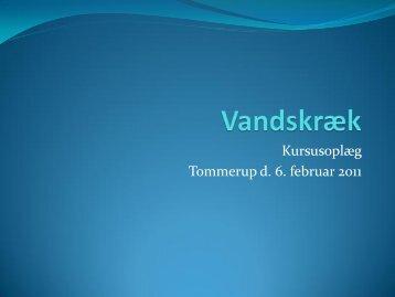 Kursusoplæg Tommerup d. 6. februar 2011