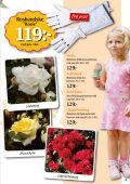 Bra pris! - Nisses Växter - Page 3