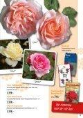 Bra pris! - Nisses Växter - Page 5