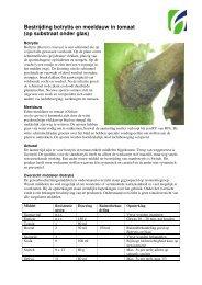 Bestrijding botrytis en meeldauw in tomaat (op substraat ... - Horticoop