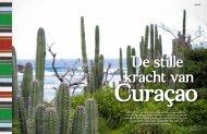 De Stille Kracht van Curacao - Happy Soul Travel