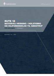 Rapport 418 Miljørapport - Vejdirektoratet