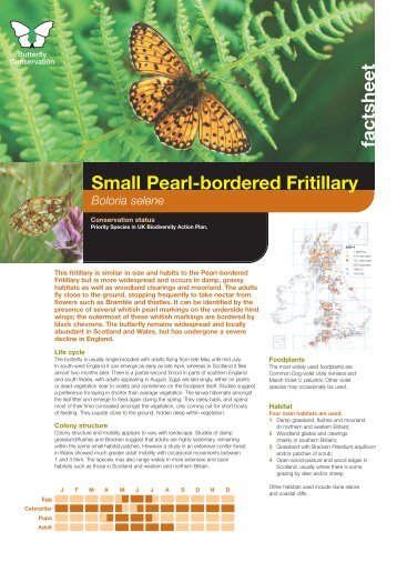 Small Pearl-bordered Fritillary - Butterfly Conservation
