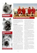 kennel Hjohoo - Hjohoo´s - Page 2