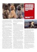 kennel Hjohoo - Hjohoo´s - Page 6