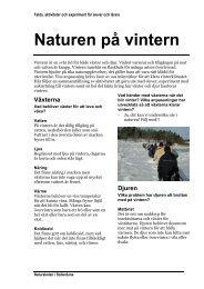 Naturen på vintern, handledning
