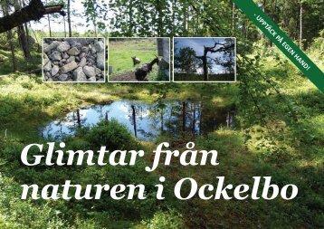 Glimtar från naturen i Ockelbo