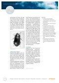factsheet 01 - de vraatzucht van muizen en ander ongedierte - Page 2