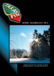 INTERNT - DEcEmbER 2010 - NR. 6 - Taxa Fyn