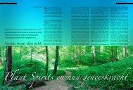 Plant Spirits en hun geneeskracht Avatar - Romantic Nature